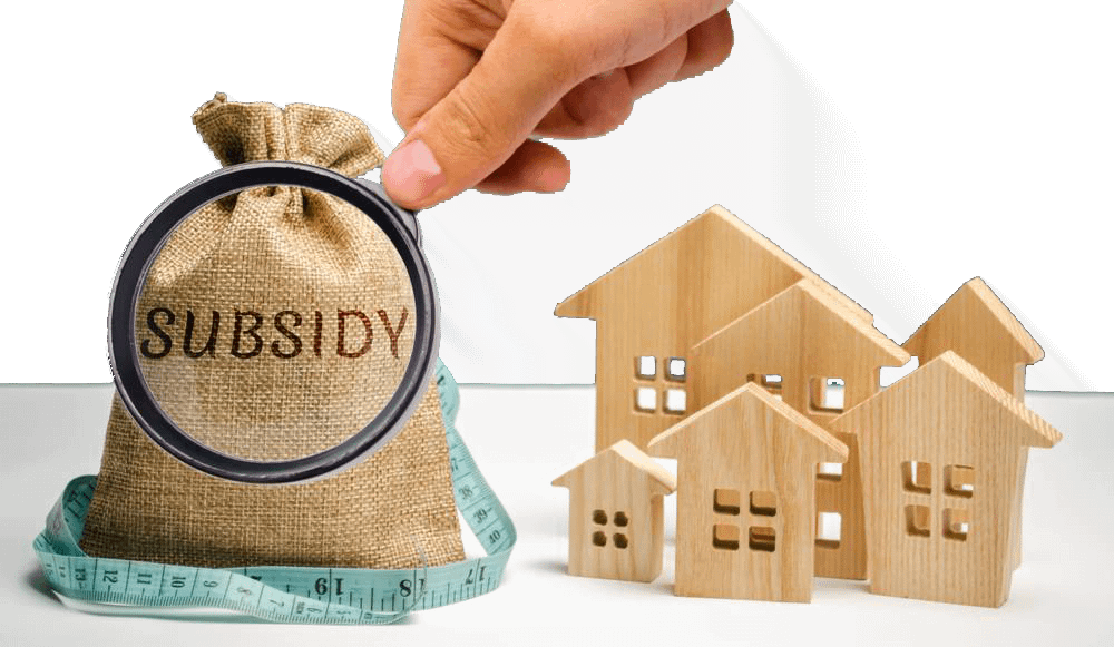 subsidy-consultant-india